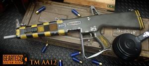 aa12-2-fin